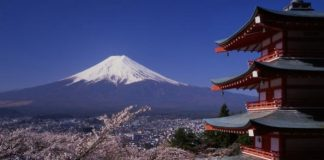 Your clients can learn all about Japan through tour packages focusing on the beauty, culture and history of the country.
