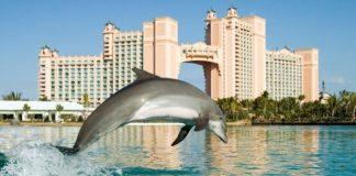Travel Impressions Atlantis