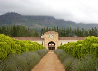 Waterford Estate in the Winelands.