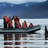 Passengers on board Safari Endeavour experience a close-up encounter with a whale during a cruise in Alaska's Glacier Bay. Because of the changes in tides and weather, no two cruises from the company are alike.