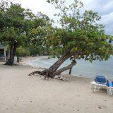 Half Moon Resort, Jamaica.