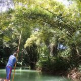 Rafting on the Martha Brae River is a uniquely Jamaican activity.