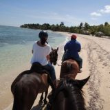 Half Moon features its own stables, and offers horseback rides along the beach.