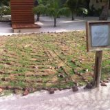 Onsite labyrinth at El Secreto for meditating.