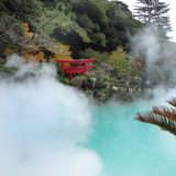"""Beppu Jigoku Meguri, literally means """"The Hell Tour of Beppu."""" Eight hot springs ooze from the earth making it one of the most famous hot spring resorts in Japan."""