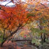 A colorful fall scene in Yuifin, a resort town full of mineral springs and reachable by a two-hour train ride from Fukuoka, one of the largest cities in Kyushu.