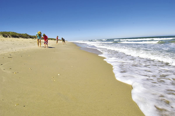 Canaveral National Seashore, courtesy of Florida's Space Coast Office of Tourism