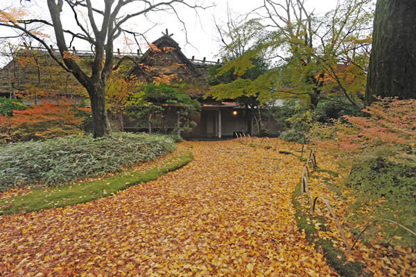 The driveway at Kamenoi Bessou in Yufuin covered with fallen autumn leaves.