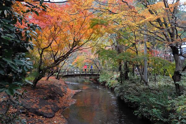Yufuin, a popular spa resort town in Kyushu.