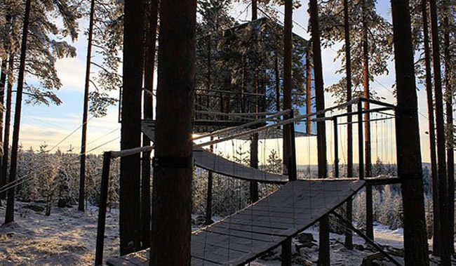 Treehotel in Sweden.