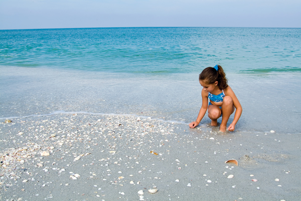 Shelling in Sanibel