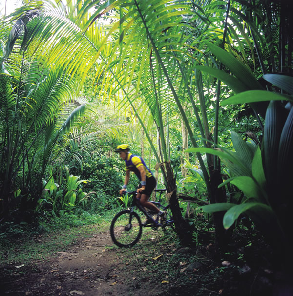 Guests of Anse Chastanet can opt to go jungle biking.
