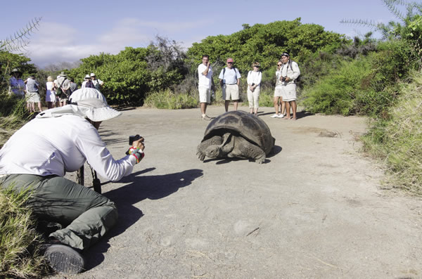 Celebrity Xpedition takes travelers to the Galapagos on 7-,10-,11- and 13-night cruises.