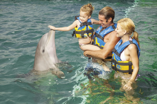 The onsite Dolphin Discovery offers families three experiences, including swimming with the dolphins.