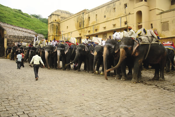 Greaves Tours offers an extensive list of itineraries to India's myriad destinations.