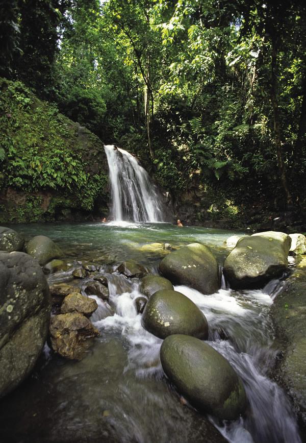 La Cascade aux Ecrevisses on Basse-Terre.