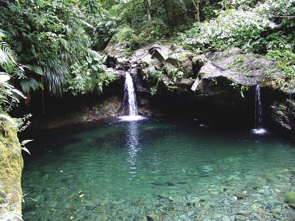 Paradise Cascade on Basse-Terre.