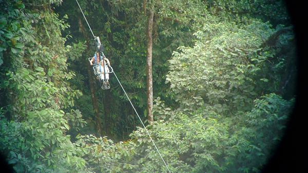 Gliding over the treetops in Ecuador.