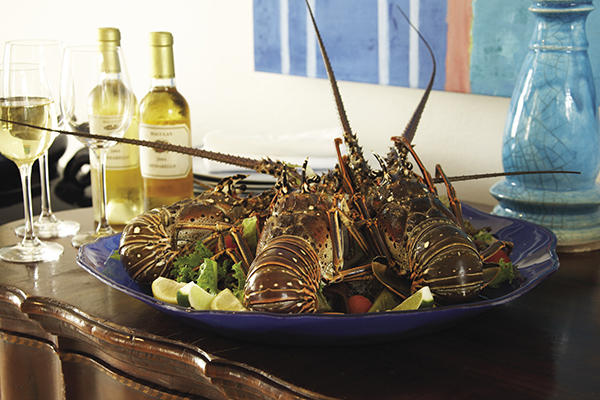 Anguilla's Spiny lobster