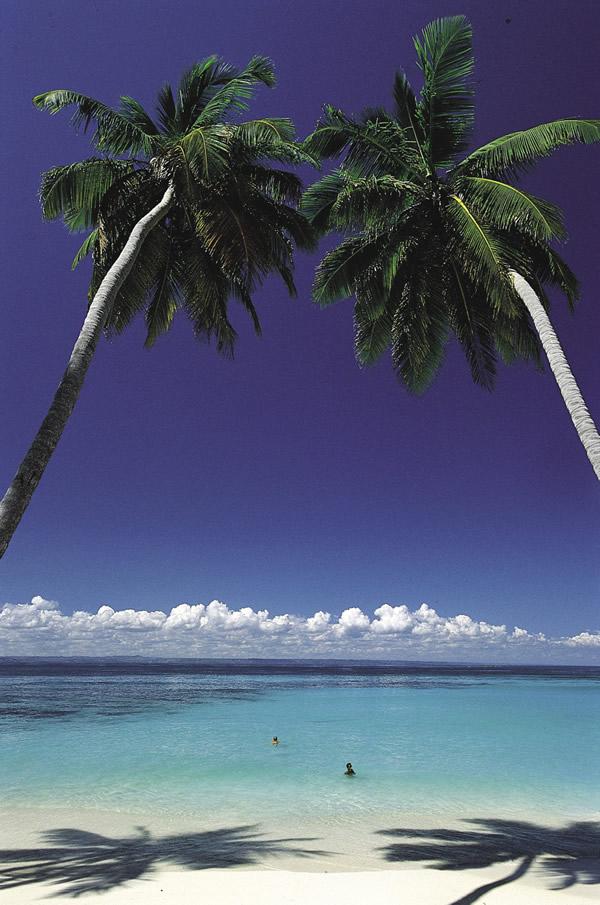 Beachside in the Dominican Republic.