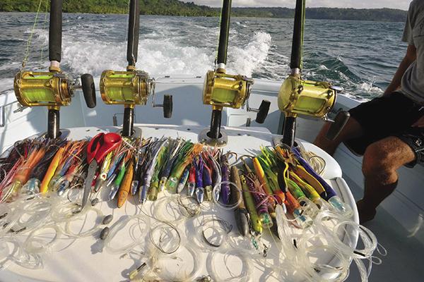 seascapekayaktours.com