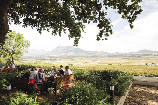 Seidelberg Wine Estate in the Cape Wine Route.