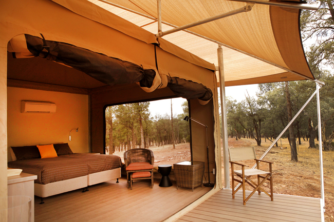 Ikara Safari Camp's luxury tent accommodations. (Photo courtesy of Ikara Safari Camp.)