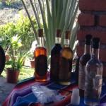 At the tequila distillery during Vallarta Adventure's Hidden Mexico tour.