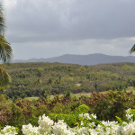 Views of the Yucan Rainforest from the terrace of one of the ballrooms at El Conquistador Resort.