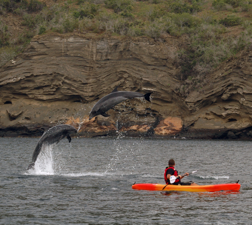 Guests kayaking while cruising on the Eclipse on the Galapagos Islands.