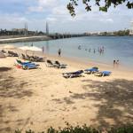 The beach at The Condado Plaza Hilton.