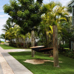 Hammocks surround the pathways not only in the Key West Luxury Village, but in all the villages as well.