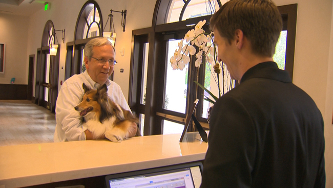 Four-legged friends are welcomed at The Alfond Inn.