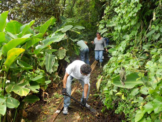 Volunteer Vacations in Costa Rica building trails in the cloud forest. (Photo Courtesy of Global Volunteers.)