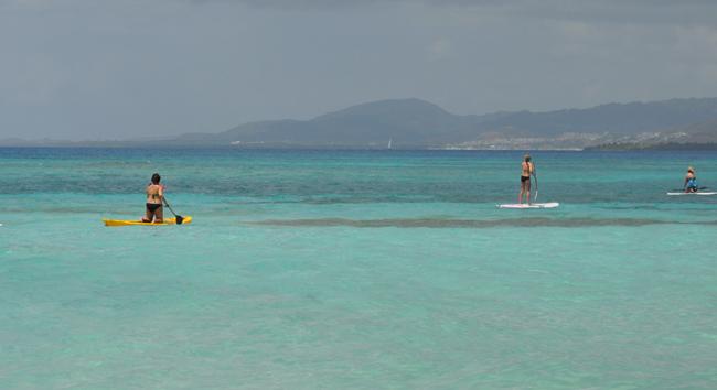 Paddleboarding off Palomino Island.
