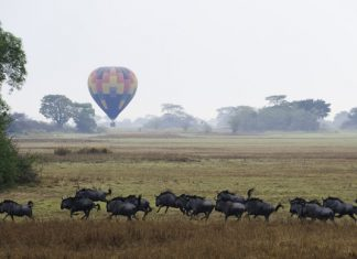 Hot air ballon safari season has begun in the Busanga Plains of Zambia's Kafue National Park.