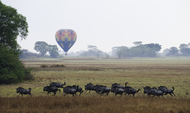 Hot air ballon safari season has begun in the Busanga Plains of Zambia's Kafue National Park.