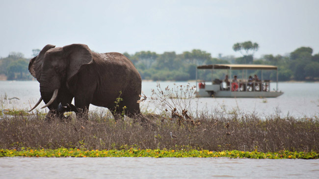 Selous Game Reserve.