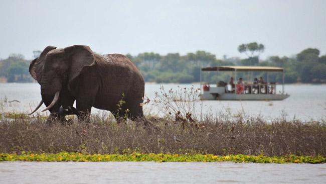 Selous Game Reserve.