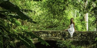 Stunning nature scenes in St. Croix.