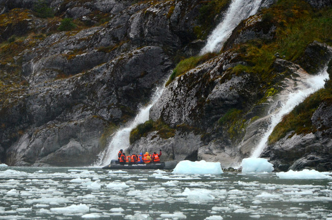 Learn about Australis Cruises' unique expeditions with the Australis Specialist Program.