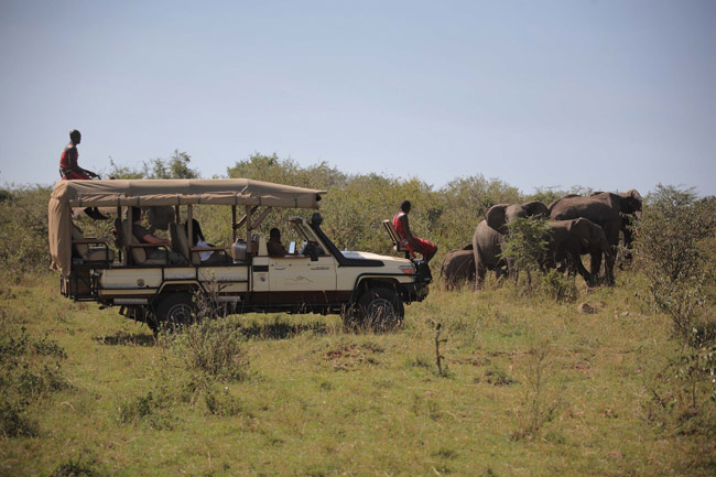 Mara Bushtops Camp Game Drive. (Photo courtesy of African Travel, Inc.)