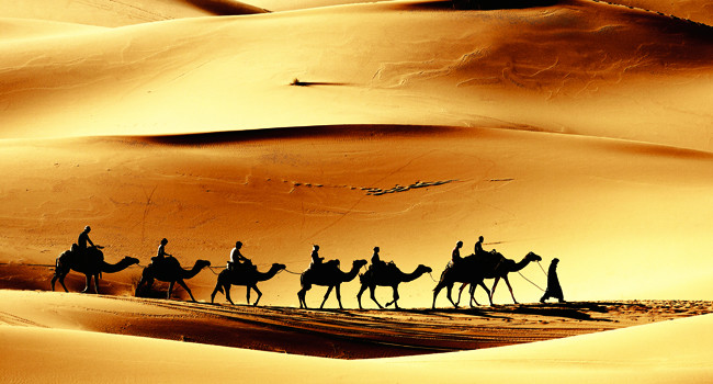 A camel caravan through the Sahara with Cox & Kings.