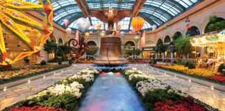 The Bellagio Conservatory.