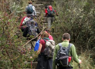 Travelers hiking up the Inca trail.