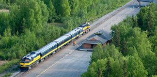 Travelrs visit Denali National Park by train.