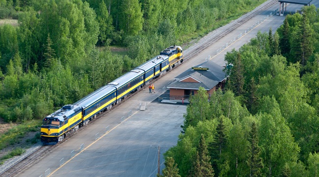 Travelrs visit Denali National Park by train.