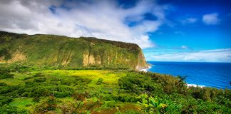 Waipio Valley view in Hawaii. (Photo credit: Estivillml/Fotolia.)