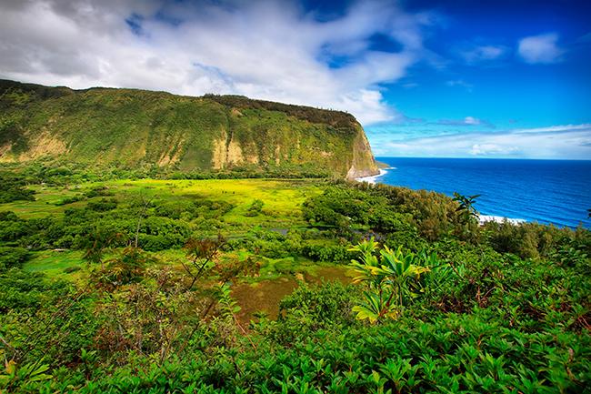 Waipio Valley view in Hawaii. (Photo credit: Estivillml/Fotolia.)