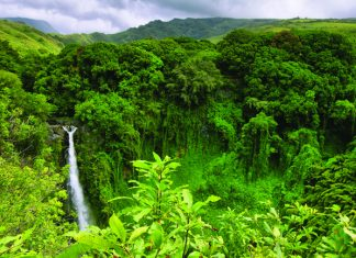 Blue Sky Tours offers Hawaii vacations exclusively and books only through travel agents.
